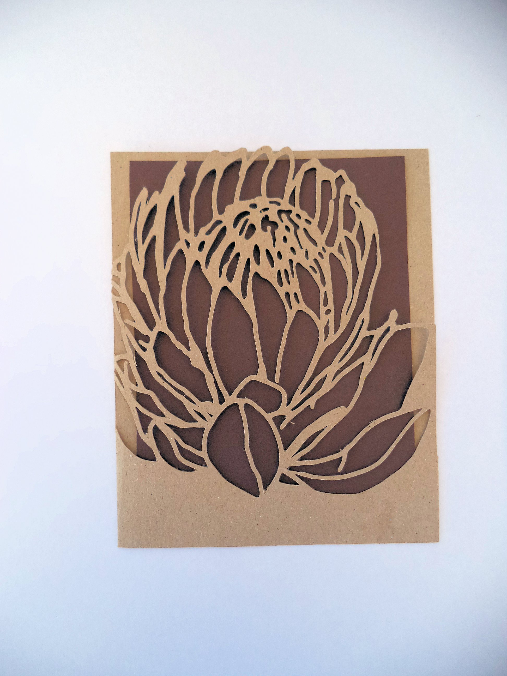 Protea Busy Lizzy Creations
